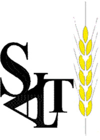 salt logo large